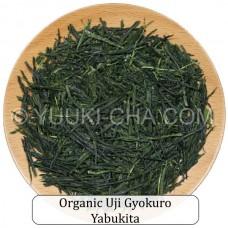 Organic Uji Gyokuro Yabukita