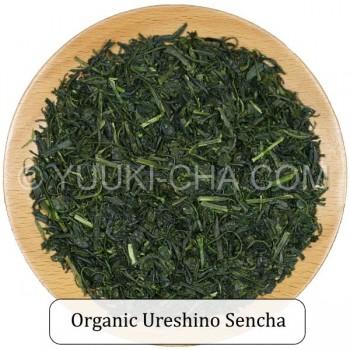 Organic Ureshino Sencha