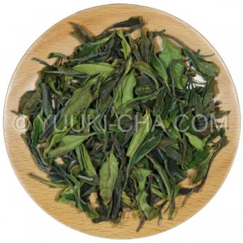 Organic Japanese White Tea Zairai