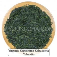 Organic Kagoshima Kabusecha Yabukita