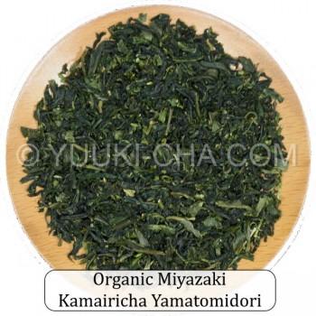 Organic Miyazaki Kamairicha Yamatomidori